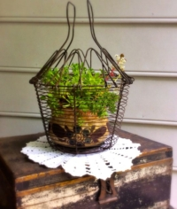 Vintage Egg Basket With Plant
