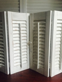 Small White Shutters