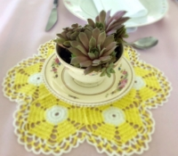 Vintage Yellow Doily with Teacup Sedum
