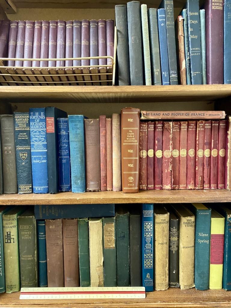 Vintage Books Rental
